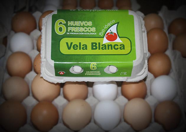 huevos ecológicos frescos en Andalucía