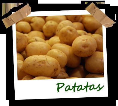 Patatas ecológicas Vela Blanca