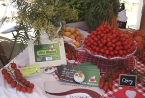 Selección productos agricultura ecológica. Andalucía