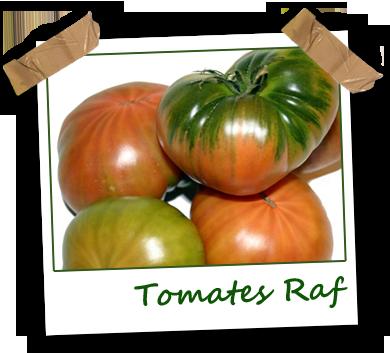 Tomates raf ecológicos Vela Blanca